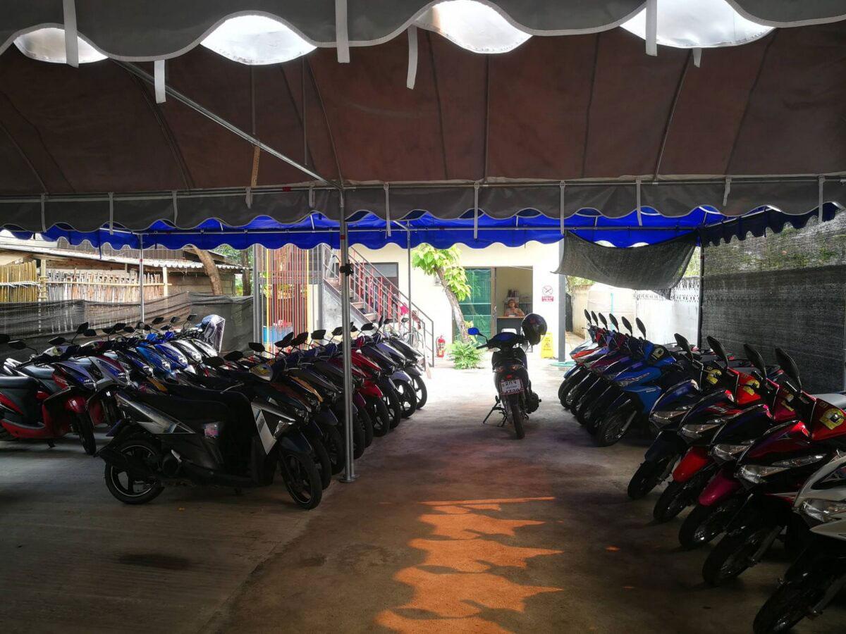 Motorbike rental in Chiang Mai Cat Motors