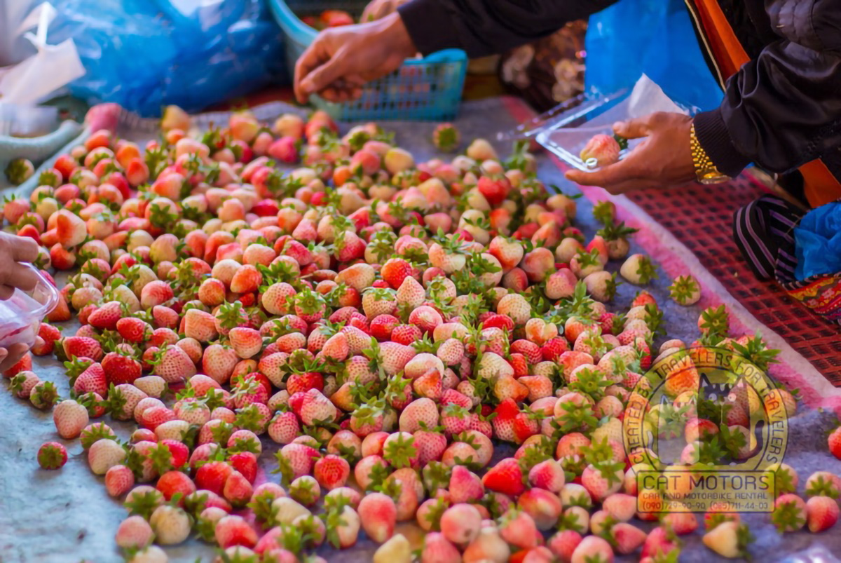 Strawberry For Sale On The Market